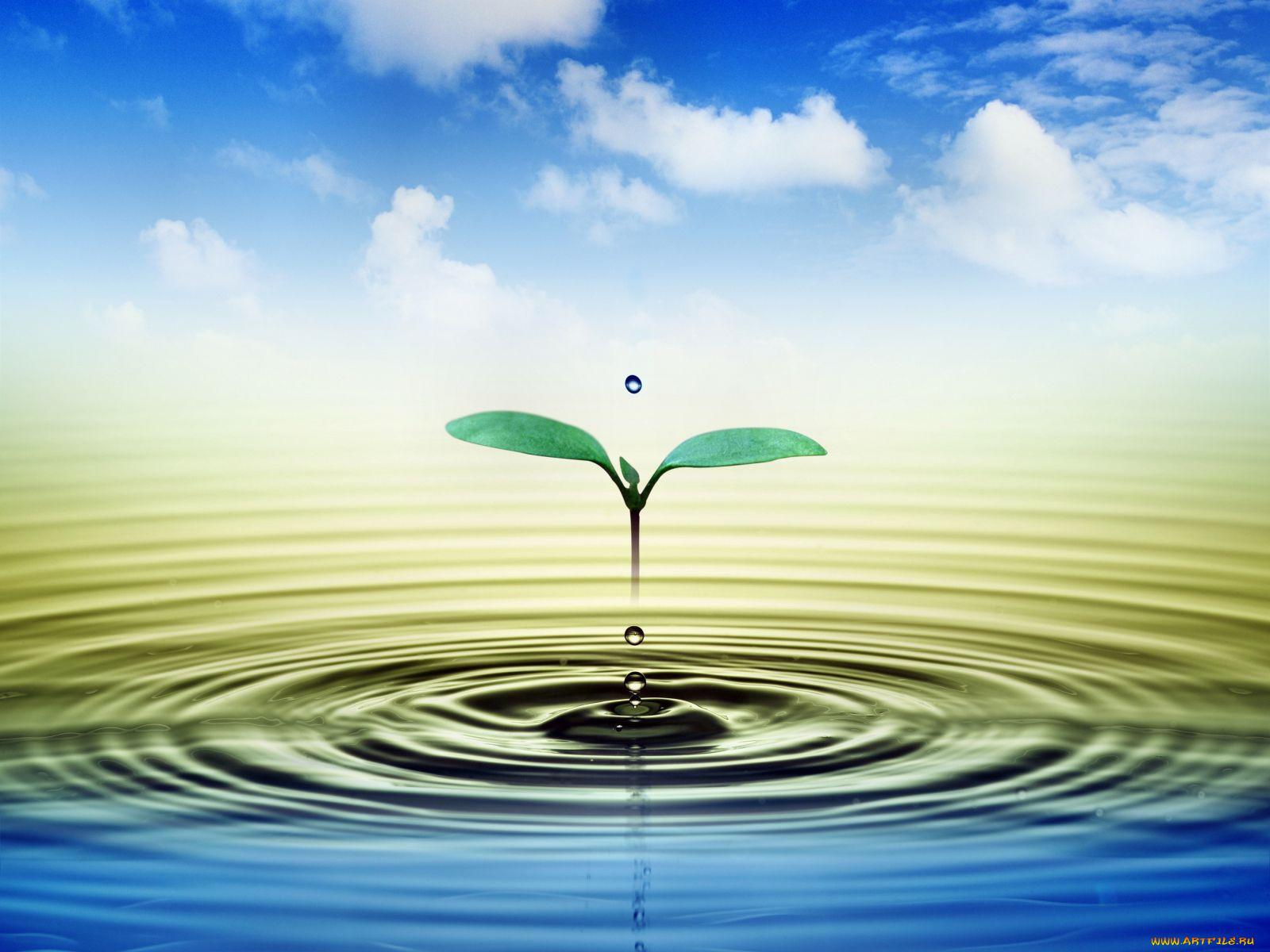 вода это жизнь картинки для презентации славится